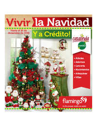 Vivir la Navidad y a Crédito!