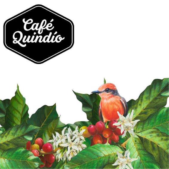 Ofertas de Café Quindío, Novedades