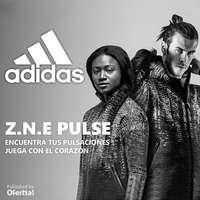 Z.N.E. Pulse