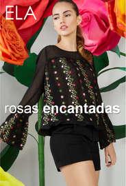 Lookbook Rosas encantadas