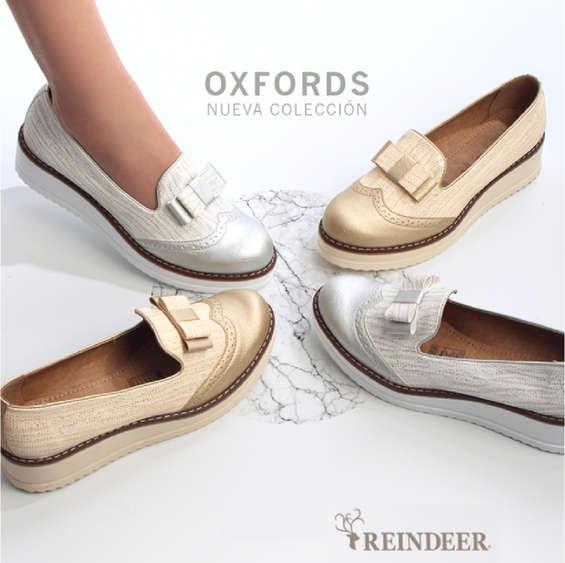 Ofertas de Reindeer, Nueva Colección - Oxfords